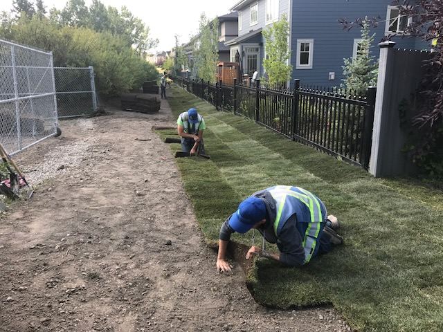 How Caring for the Environment Saves Your Project Money - Erosion Control - Erosion Control Experts Calgary